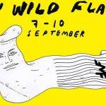 Festival: My Wild Flag 7– 10 september