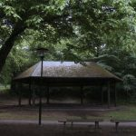 """""""En annan paviljong""""  en film av Anna Koch"""